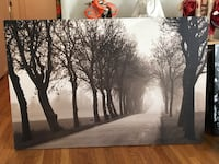 trees and path painting