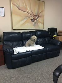 Leather Couch, set for fast Sell!  Dog not included :) Los Angeles, 91364