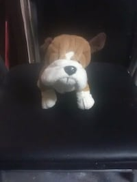 white and brown dog plush toy Louisville, 40208