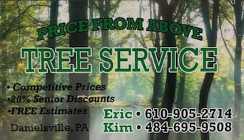 Price from above tree service