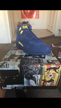 Michigan Jordan 12 size 11 DS BRAND NEW Los Angeles, 91331