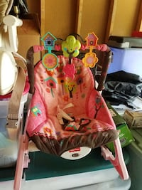 baby's brown and pink Fisher-Price bouncer Norfolk, 23517