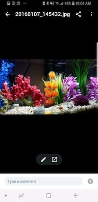 Fish Tank Coral, Stones and Accessories Mississauga, L4X 2A9