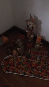 Fall Decorations  Canton, 61520