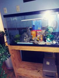 30g Fish Tank w/ Stand, Pumps & Lots of Extras Urbandale, 50322
