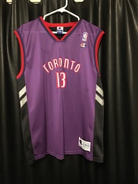 Vintage raptors jersey/ball Waterdown, L8B 0B8