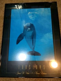 Dolphin Picture Frame St. Peters, 63376