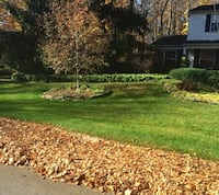 Leaf gutter cleanup Chevy Chase, 20815