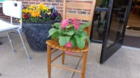 Chair planter 319 mi