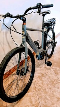 2018 RALEIGH ELECTRIC, NEW.MEDIUM SIZE,  South Gate
