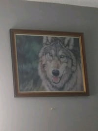 Wolf picture 10x20in Edmonton, T5T 3S9