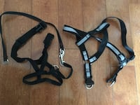 Dog harnesses for sale!