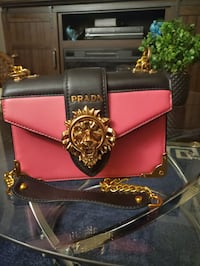 Prada handbag or shoulder bag St. Cloud, 56303