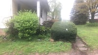 Lawn mowing , hauling ,snow plow , trimming , powe Silver Spring