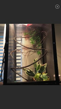 Cage for reptiles