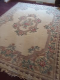 Thick Pile Oriental Style Rug, is 8x11 and the other two are 5x7 rugs with light use. Need these gone im moving. TAYLOR