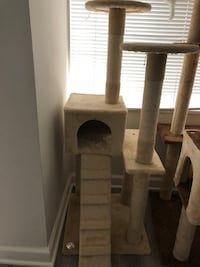 Cat Tree  Arlington, 22206