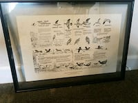 Migratory bird poster from 1962 Kenner, 70065