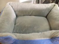 New Cat Bed Tucson, 85711