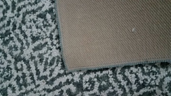 Small Blue and White Patterned Rug (30in x 46in) 97dbaf76-f7b2-4bb4-ad68-0d32e154f19b