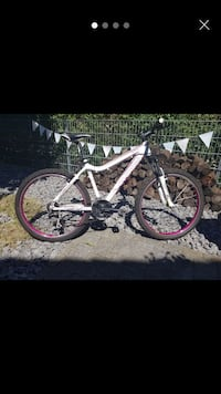 MTB / Crossbike Lampertheim, 68623