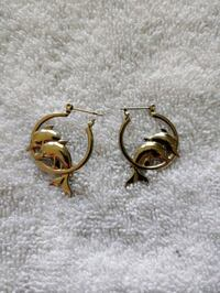 Dolphin earrings Littlestown, 17340