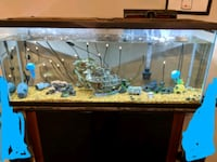 55 gal aquarium with stand Fort Benning, 31905