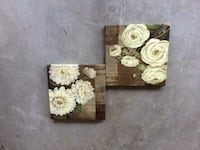 two white-and-green floral print boards Altamonte Springs, 32714