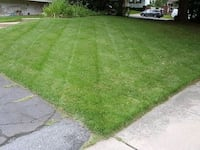 Grass Treatment and Cutting Hyattsville, 20782
