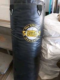 Everlast punching bag Edmonton, T6V 1B1