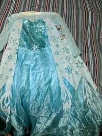 Frozen Dress Halloween Costume Fairfax, 22030