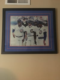 Chicago Cub autograph stars!    With there nicknames !   PSA. Certified Addison, 60101