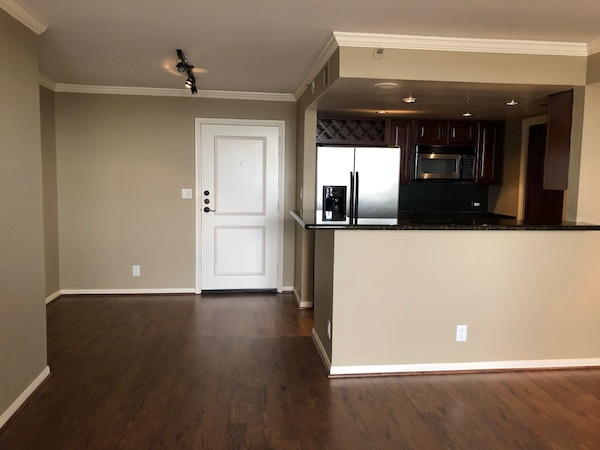 Houston High-rise For rent 1BR 1BA