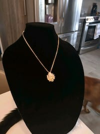 18k gold plated goku chain and pendant set necklac Halifax