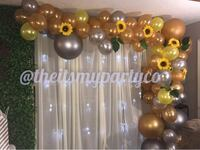 Balloon garland  Jacinto City