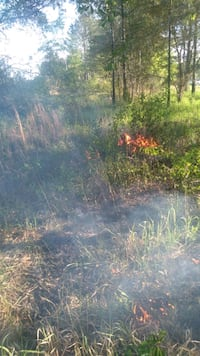 Control Burning Expert $300 acre