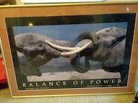 Elephants Picture w/gold metal frame Madison, 53714