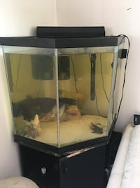 black framed clear glass fish tank Silver Spring, 20902