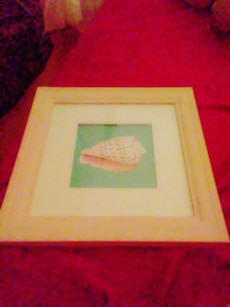 square brown wooden framed painting of shell