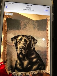 Black Lab Tapestry with matching pillow Toronto, M1E 3Z7
