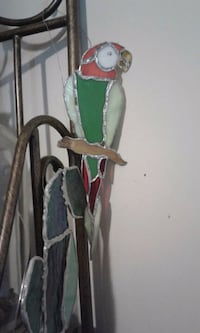 Stained glass parrot Fullerton, 92833