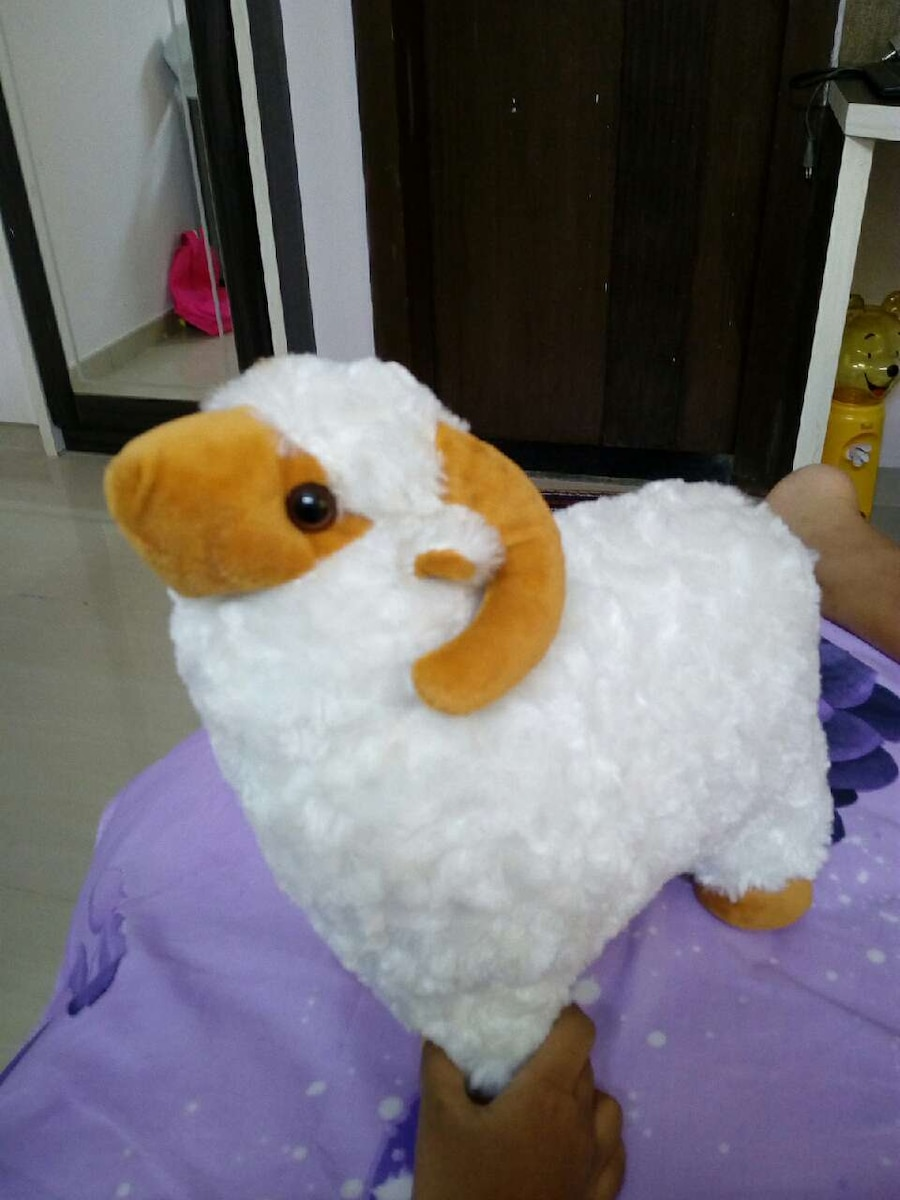 white and brown sheep plush toy