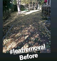 Landscaping and leaf removal Minneapolis