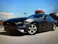 2019 Ford Mustang Surrey