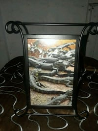 Framed pic of alligators on top of each other  Jensen Beach, 34957
