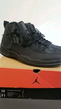 Air Jordan 12 retro wintershoes Washington, 20018