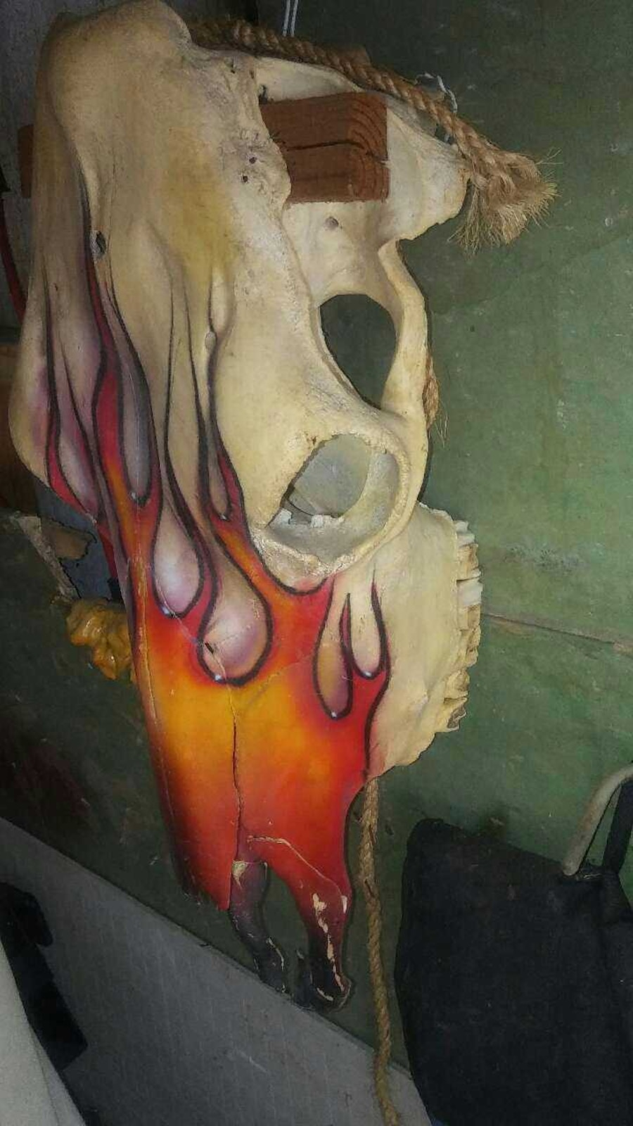Custom Painted Cow Skull.  - Rayford