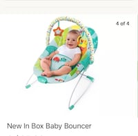 baby's blue, green, and teal bouncer