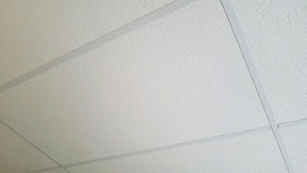 2'x4' White Drop Ceiling Tiles (about 50)