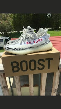 white Adidas Yeezy Boost 350 V2 shoes with box Gaston, 29053